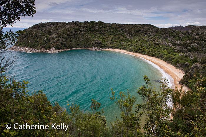 Deserted beach in Torrent Bay, New Zealand. December 2014. Abel Tasman National Park, NZ