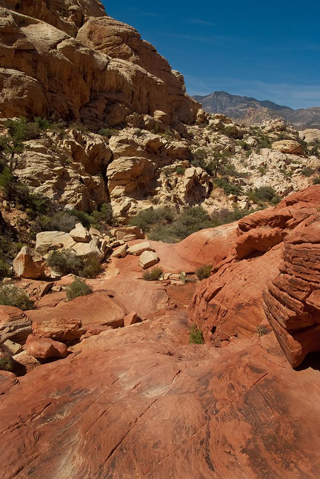 Hiking Red RockCanyon