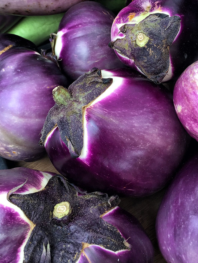 #eggplant, #farmersmarket, #newyorkcity, #newyork, #nature, #vegetables, #purple, #unionsquare