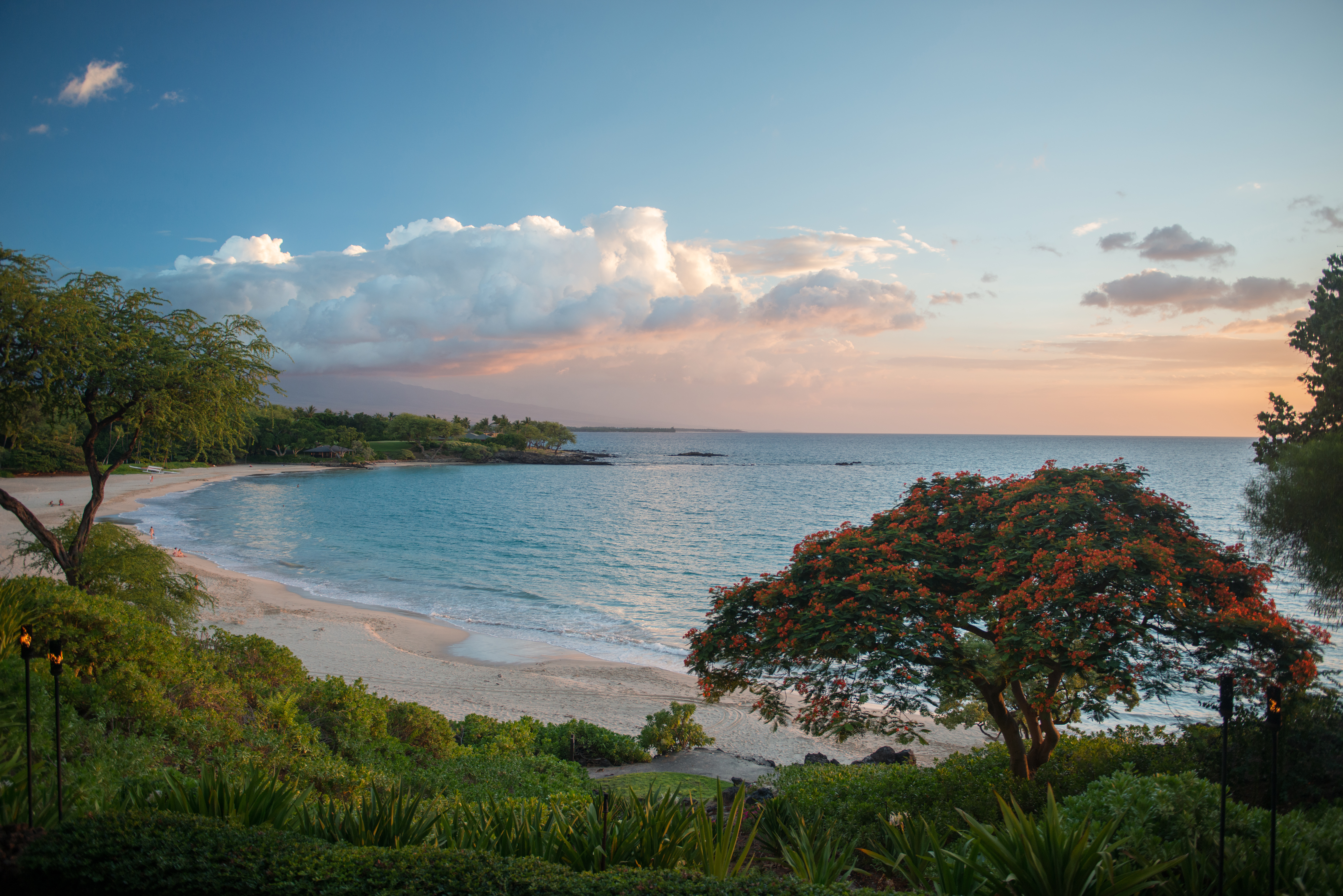 #hawaii, #kona, #kailuakona, #leeward, #crescentbeach, #beach, #sunset, #plumeria, #peace