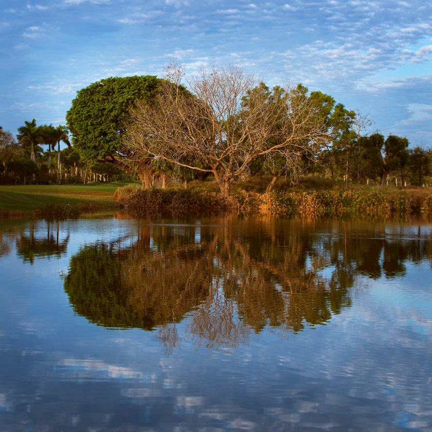 #golf, #reflection, #florida, #sky, #orangeandblue, #naples