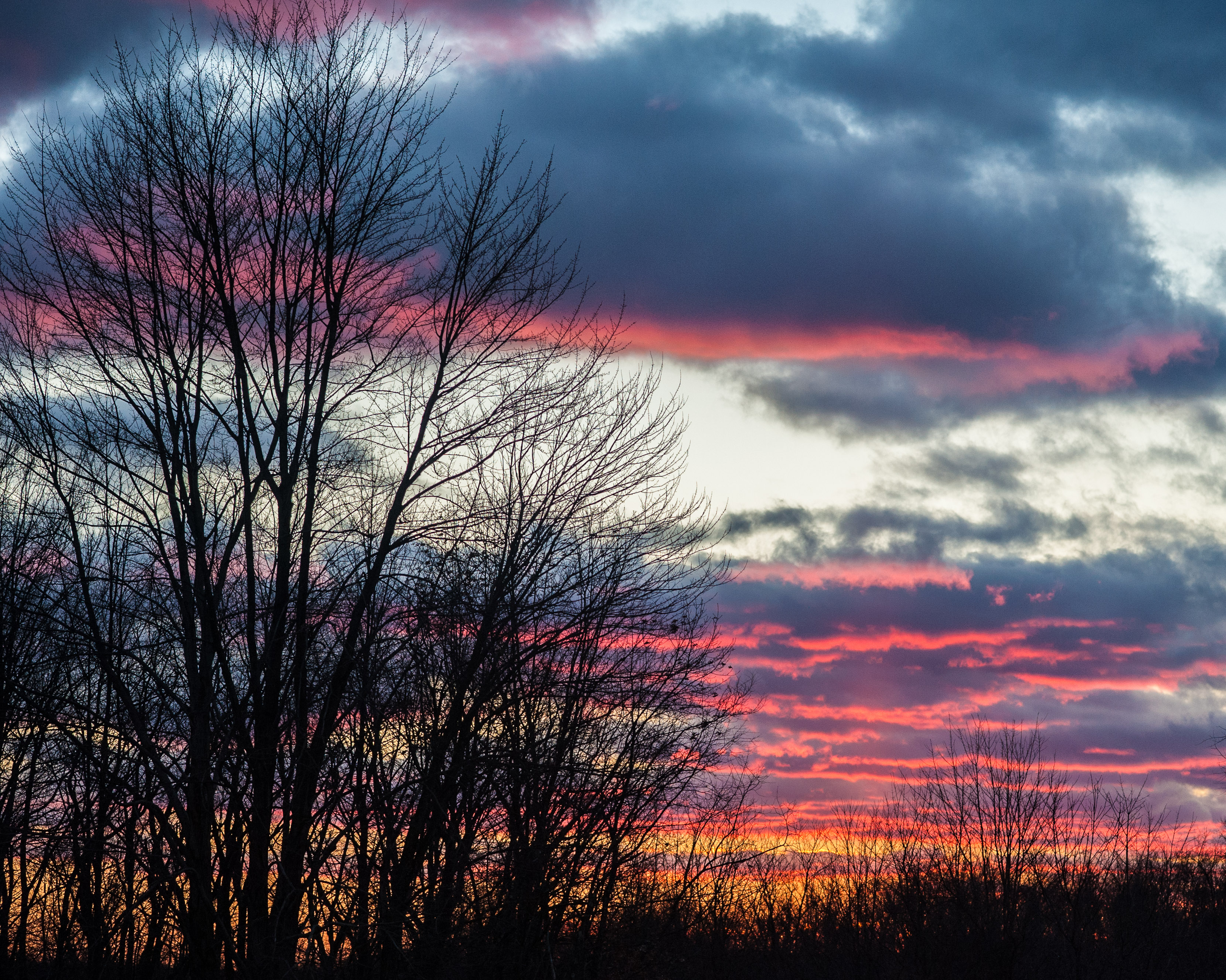 #sunset, #clouds, #trees, #November, #sewickley, #pennsylvania