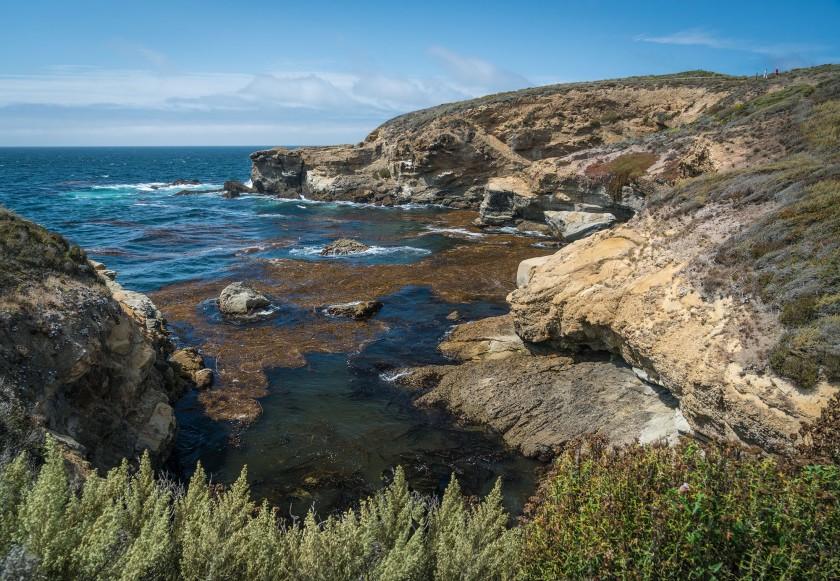 #landscape, #california, #pointlobos, #ptlobos, #statereserve, #montereybay, #monterey, #carmel, #thingstodo, #hike, #hikecalifornia