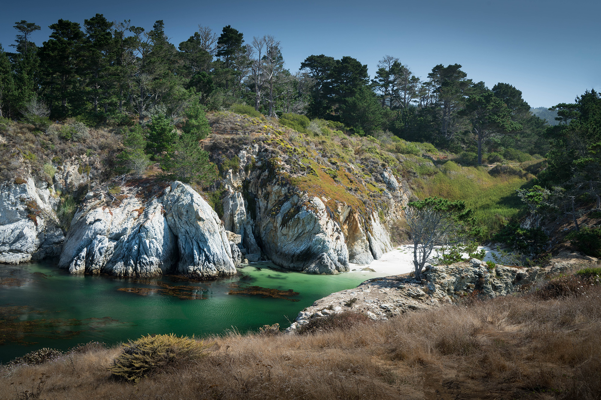 #pointlobos, #cove, #beach, #deserted, #private, #green, #california, #bigsur, #hike, #landscape, #photography