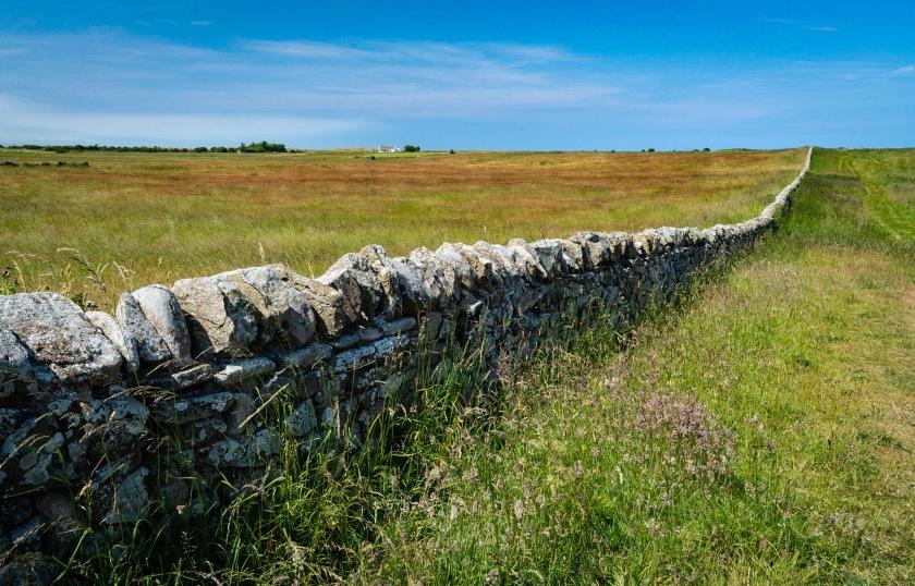 #stonefence, #fields, #lindisfarne, #holyisland, #hike, #lowtide, #northumbira, #northumblerland, #england, #travel, #travelphotography, #sony
