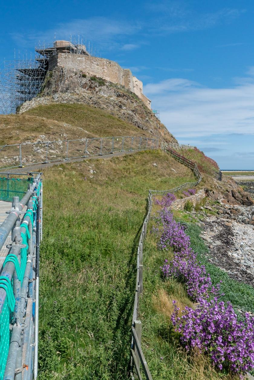 #scaffolding, #fence, #restoration, #castle, #lindisfarne