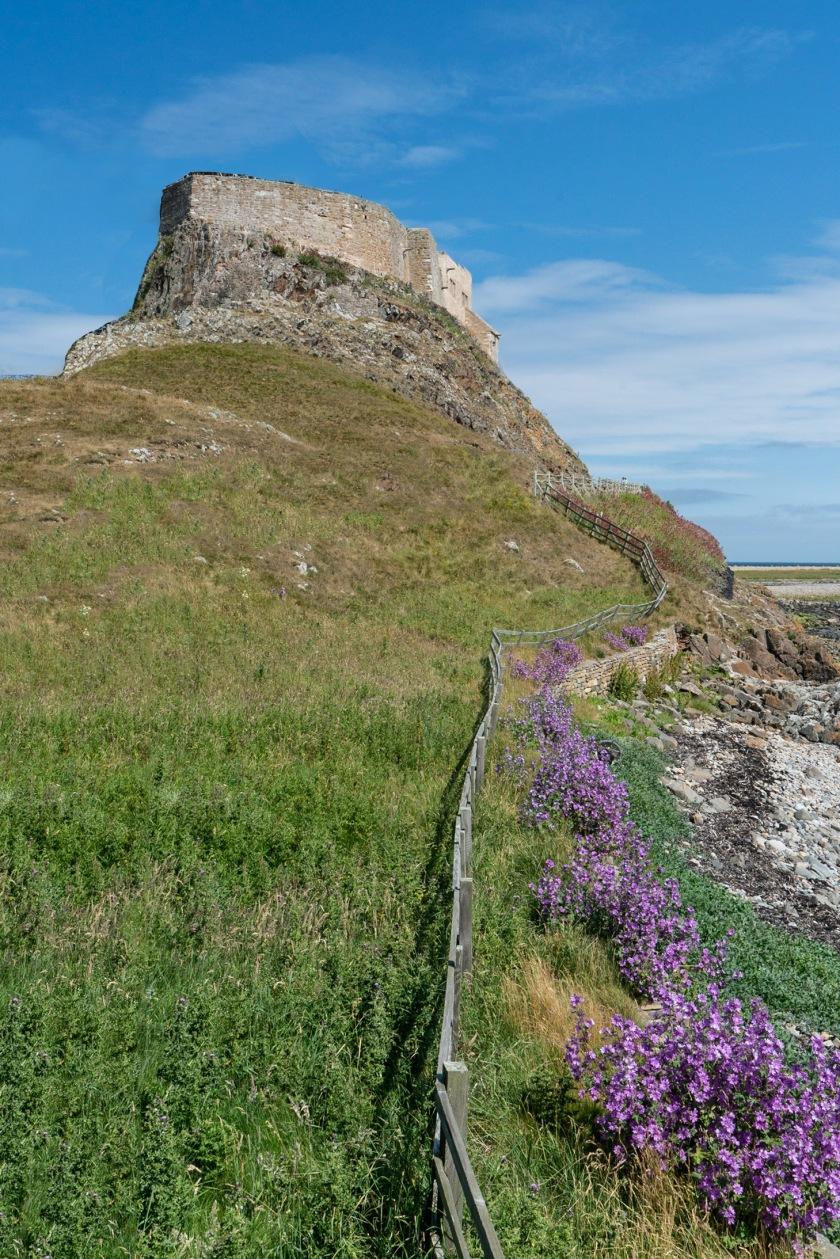 #castle, #photoshopped, #imaginethis, #lindisfarne, #pastoral, #landscape #england