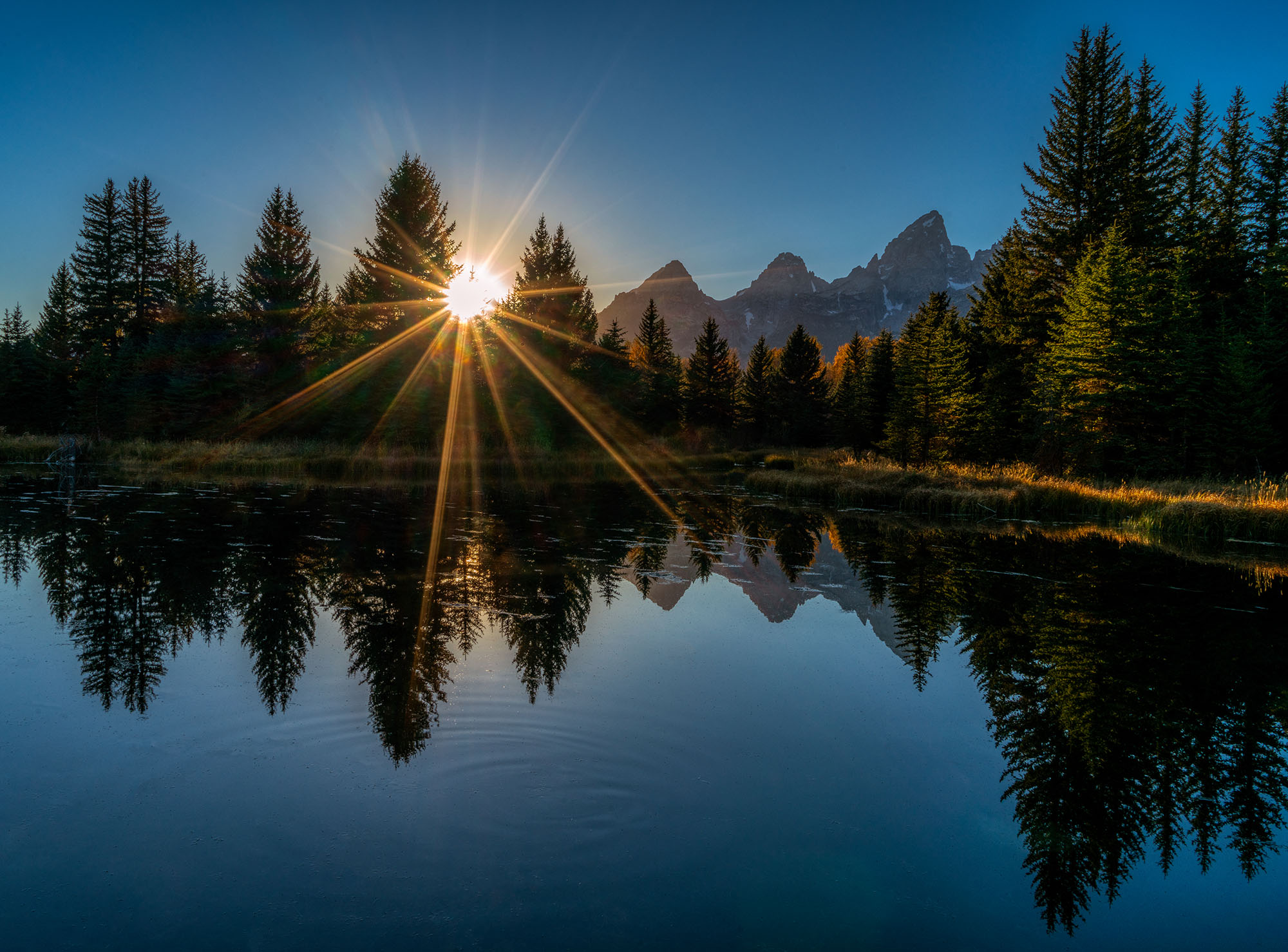 #sunset, #grandtetons, #schumacherslanding, #grandtetonnationalpark, #nationalparks, #sunstar, #noclouds, #sky, #reflection, #stillness, #landscape, #landscapephotography, #evergreens, #howto