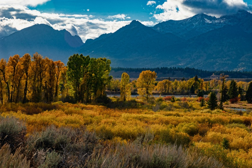 #valley, #grandtetons, #jacksonhole, #gtnp, #golden, #sky, #sunnyday, #wyoming, #grandteton, #landscape, #nikon