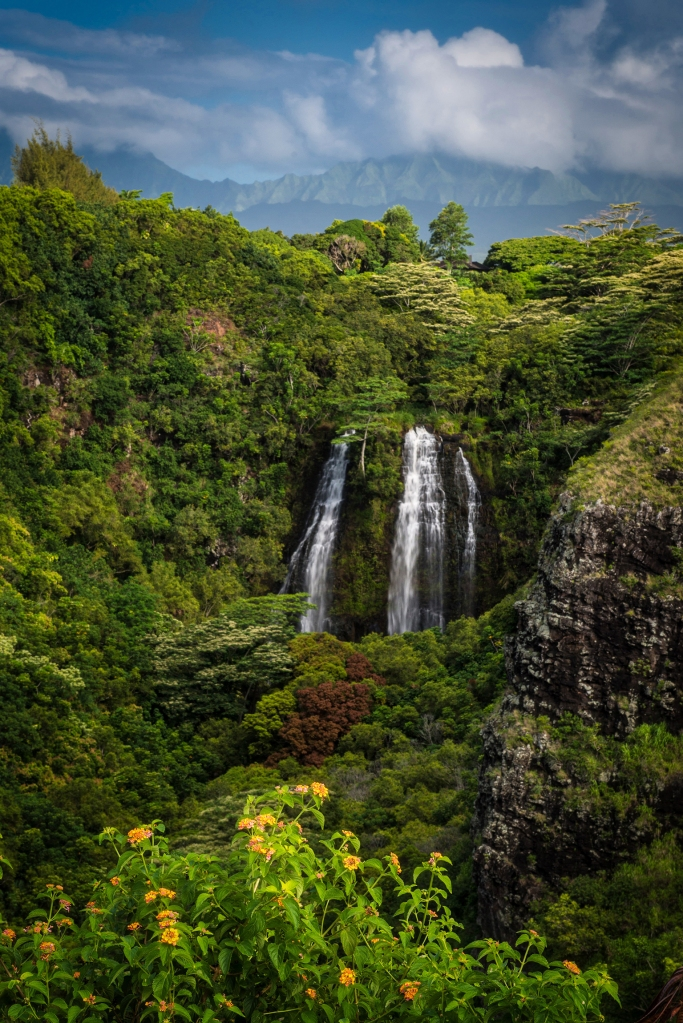 #kauai, #waterfall, #gardenisle, #lush, #hawaii, #photography, #nature, #wilderness, #wedding