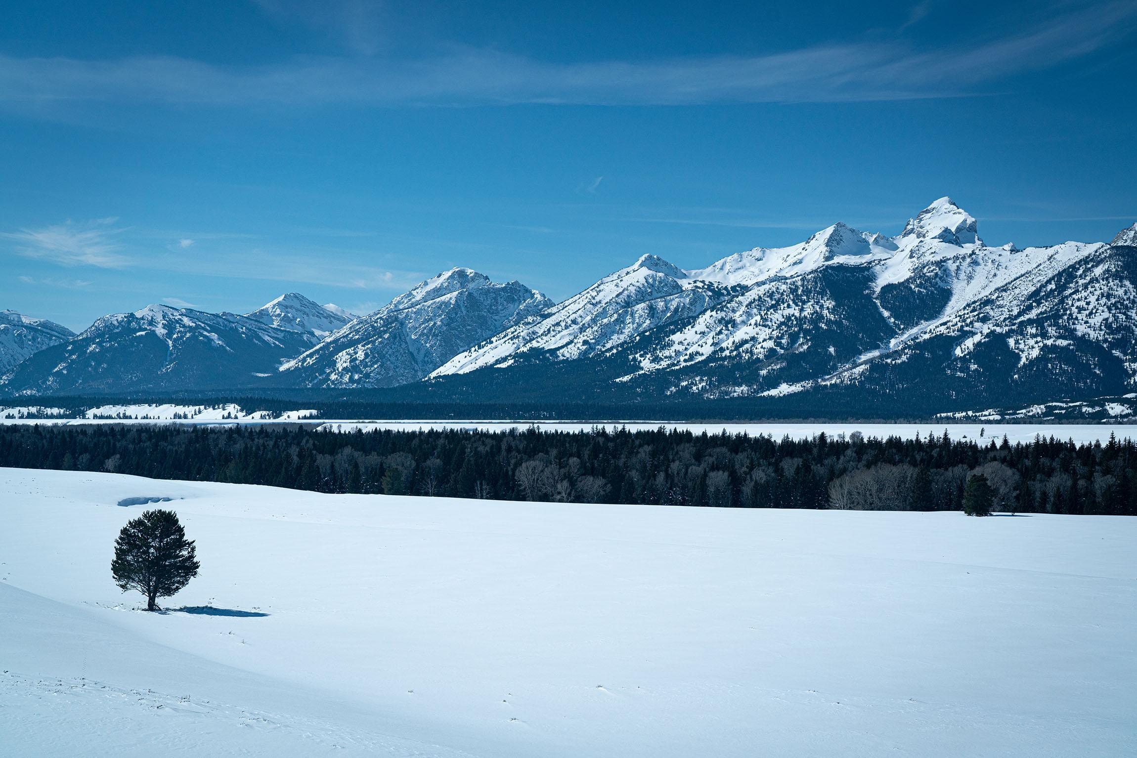 #grandtetonnationalpark, #grandtetons, #nationalpark, #lonetree, #snow, #winter, #mountains,